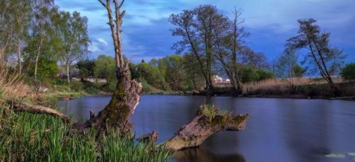 Moja ma�a ojczyzna - Rzeka Gwda