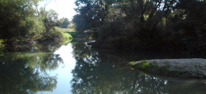 Rzeka Opawa