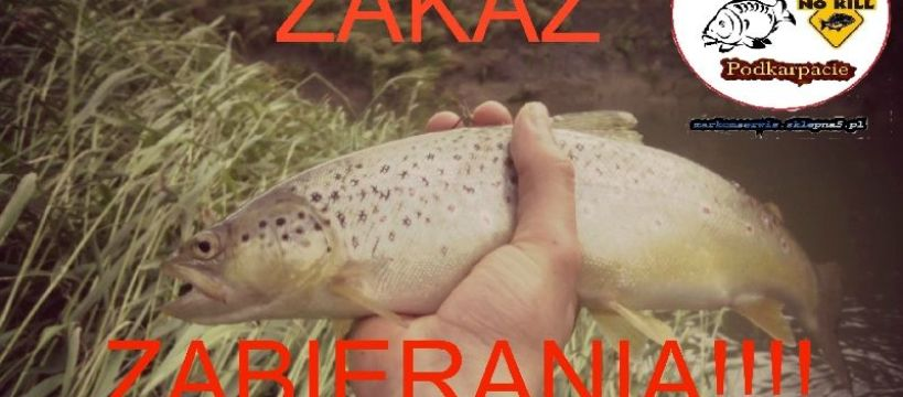 Zakaz na Lubatówce oraz akcja ochrony ryb na Podkarpaciu!