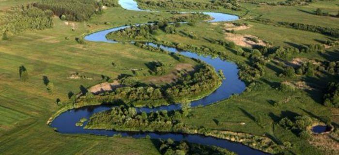 Niedzielny wypad w�dkarski nad rzek� Pilic�