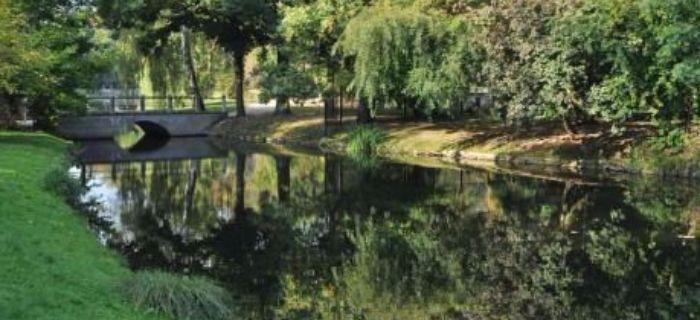 Poranek w parku z w�dk�.