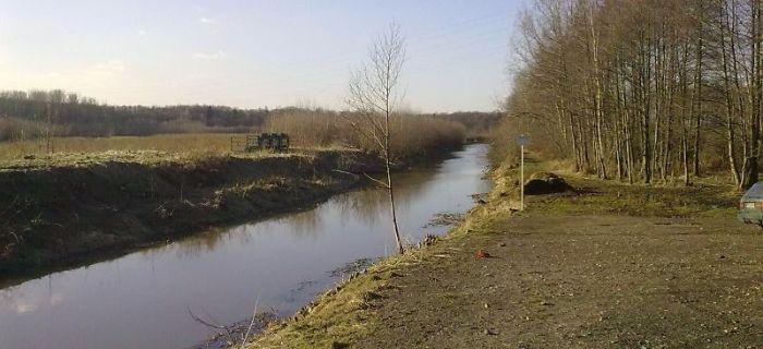 Rzeka Pszczynka - Brze¼ce
