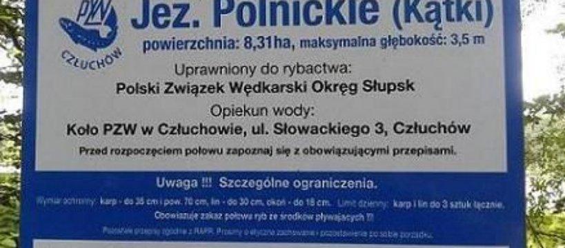 Po latach na jeziorze Polnickim