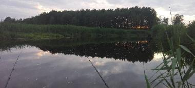 Rzeka Narew na odcinku Narwiañskiego Parku Narodowego