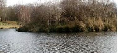 Jesienne wêdkowanie-wypad na rybki