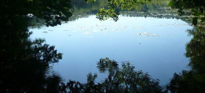 Jezioro Bielsko - £owisko zapomniane przez wêdkarzy