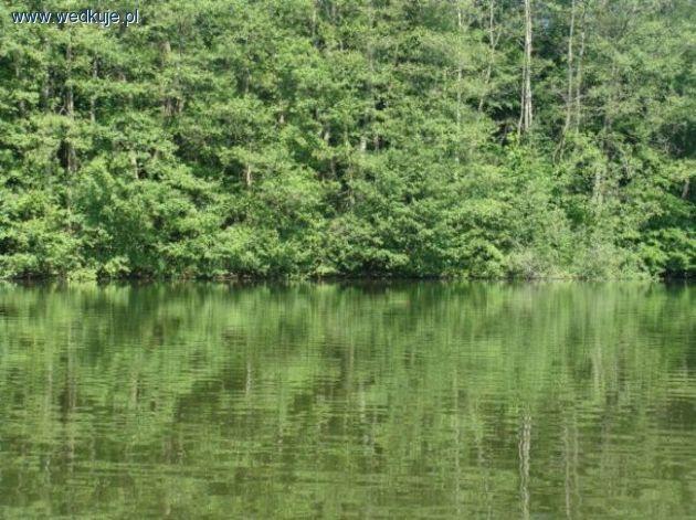 Jezioro Budzieszowskie