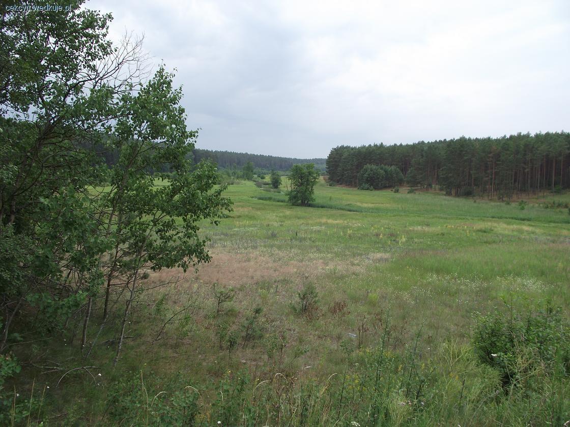 Rzeka Rak�wka