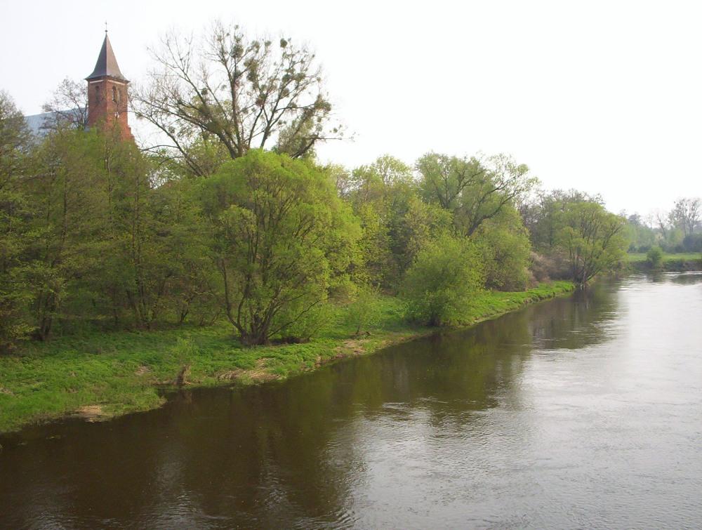 Rzeka Bzura okolice uj¶cia do Rawki