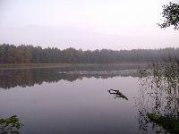Jezioro Lubartynia (Tarcza)