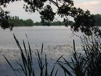 Jezioro S�upeckie - Wielkopolska