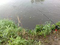 Rzeka Kamienna (Ostrowiec ¦wiêtokrzyski)