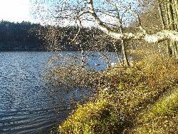 Jezioro Dzikowo