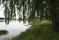 Jezioro Ziemnickie