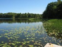 Jezioro Czarnoleskie: