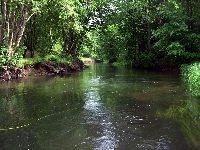 Pomorska Rzeka Radunia