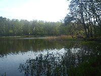 Pusty Staw - jezioro