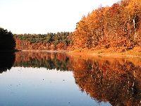 Jezioro Kopcze - wysychaj±ca ka³u¿a