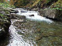 Rzeka Szczawa Lubomierz