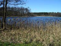 Jezioro Szp�gawskie - Rywa�d