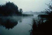 Rzeka Barycz - £owiska Gminy W±sosz