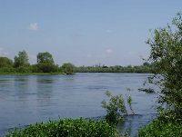 Rzeka Bug w okolicy miejscowo�ci Bra�szczyk