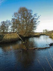 Rzeka �eba