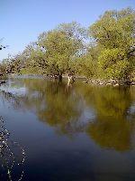 Rzeka Bug - Czumów ko³o Hrubieszowa