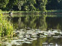 Jezioro £omno