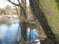 Rzeka Luci±¿a