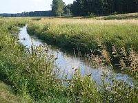 Rzeka Pilica - Pilica - Przy��ka (odcinek g�rski)