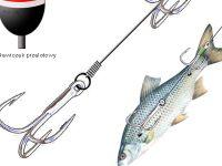 Martwa rybka - metoda wêdkarska