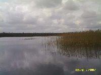 Jezioro My¶liborskie Wielkie (Jezioro Wielkomy¶liborskie)