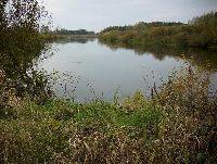 Rzeka Note� - powiat strzelecko – drezdenecki