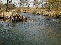 Rzeka Kaczawa - Uj¶cie Nysy Szalonej