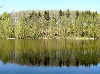 Jezioro Czarna Woda - Lubuskie