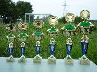 Puchar Starosty Wschowskiego