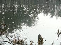 Jezioro Niewierz