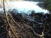 Jezioro Karwno - wsta�my do APELU