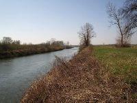 Rzeka Wis³a w okolicy uj¶cia Raby