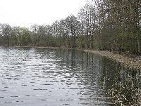 Jezioro Jerzyn (Jerzyñskie)