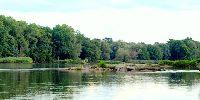 Rzeka Odra Bytom Odrza�ski