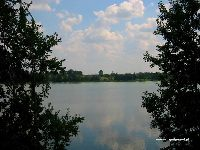 Jezioro G³uszyñskie - Orzelskie