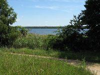 Jezioro P³awniowice (Pyskowice)