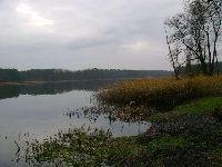 Jezioro K±pielowe (Czy¿ykowo,Cisek)