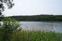 Jezioro Stra¿ym (Pojezierze Brodnickie)
