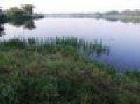 Zbiornik Drzewica