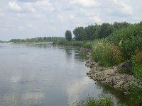 Wis�a w okolicach Piwonina