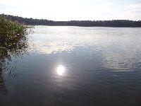 Jezioro Wilkus