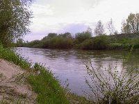 Rzeka Wis�oka Z�otniki 2